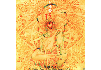 Acid Mothers Temple Acid Mothers Temple & The Melting Paraiso U.F.O. - Benzaiten [CD]