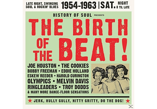 VARIOUS - The Birth Of The Beat 1954-1963 - (CD)