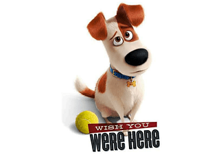 The Secret Life Of Pets Poster Wish You Were Here
