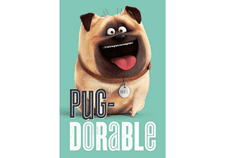 The Secret Life Of Pets Poster Pug-Dorable