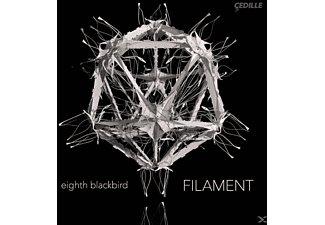 Filament - Eighth Blackbird - (Vinyl)