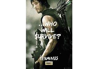 The Walking Dead Poster Daryl Survive