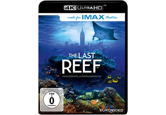 The Last Reef - (4K Ultra HD Blu-ray)