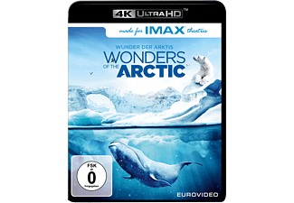 Wonders of the Arctic [4K Ultra HD Blu-ray]