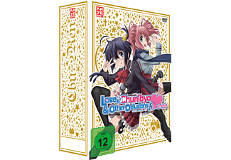 Love, Chunibyo & Other Delusions! -Heart Throb- – Staffel 2.1 – Limited Edition mit Sammelbox [DVD]