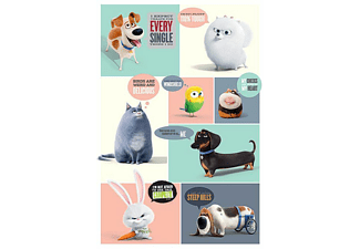 The Secret Life Of Pets Poster Pets Thinking