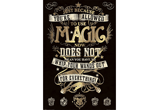 Harry Potter-Magic-Poster