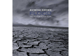 Avishai Cohen - Flood - (CD)