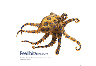 VARIOUS - Real Ibiza Vol.9 [CD]