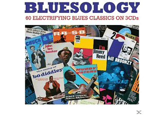VARIOUS - Bluesology - (CD)