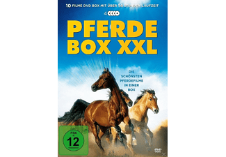 Pferdebox XXL [DVD]