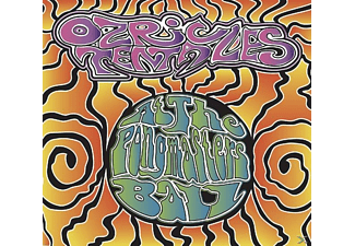 The Ozric Tentacles - At The Pongmasters Ball [CD + DVD Video]