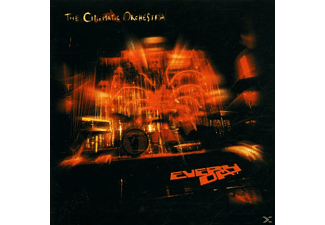 The Cinematic Orchestra - Everyday - (CD)