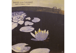 David Fathead Newman - Until The Sadness Is Gone - (Vinyl)