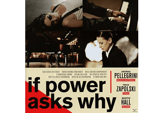 VARIOUS - If Power Asks Why - (CD)