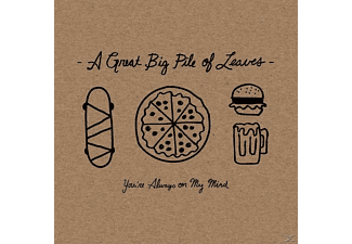 A Great Big Pile Of Leaves - You're Always On My Mind - (CD)