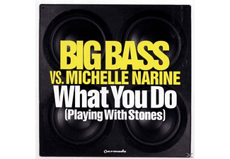 Michelle Bigg Bass Vs.narine - What You Do - (Maxi Single CD)