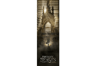 Fantastic Beasts Langbahnposter