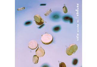 Pangaea - In Drum Play (2LP+MP3) - (LP + Download)