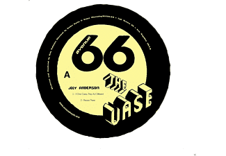 Joey Anderson - The Vase - (Vinyl)