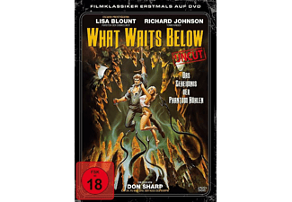 What Waits Below - Das Geheiminis der Phantom Höhlen - (DVD)