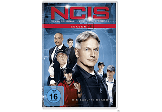 Navy CIS - Season 12 - (DVD)