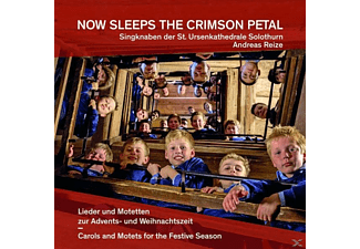 Singknaben der St.Ursenkathedrale Solothurn - Now sleeps the Crimson Petal - (CD)