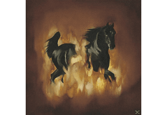 The Besnard Lakes - Are The Dark Horse - (CD)