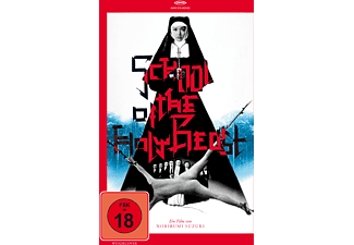 School of the Holy Beast - (DVD)
