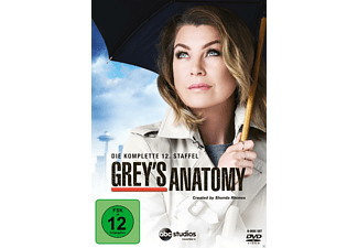 Grey's Anatomy - Staffel 12 - (DVD)