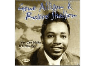 Roscoe Shelton - You Can Make It If You Try - (CD)