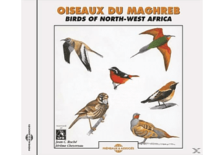 Birds Of North-west Africa - Oiseaux Du Maghreb - (CD)