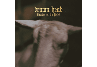 Demon Head - Thunder On The Fields - (Vinyl)