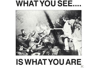 Here And Now & Alternative Tv - What You See Is What You Are - (CD)