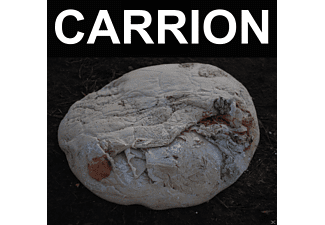 Recitation - Carrion - (Vinyl)