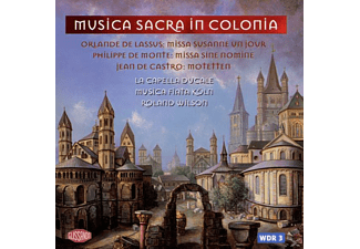 Musica Fiata - Musica Sacra In Colonia - (CD)