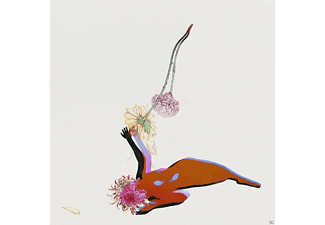 Future Islands - The Far Field - (CD)