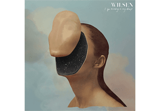 Wilsen - I Go Missing In My Sleep - (CD)