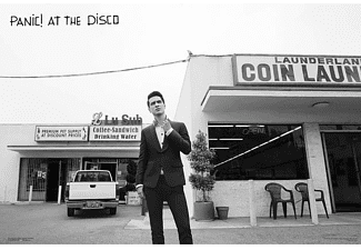 Panic! At The Disco Poster Brandon Laundromat