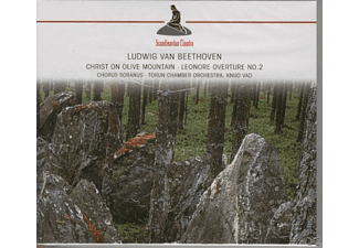 Petersen, Zdunikowski, Larsen, Torun Chamber Orchestra - Beethoven - Christ On Olive Mountain - Leonore Overture No. - (CD)