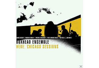 Boxhead Ensemble - Here: Chicago Sessions - (Vinyl)