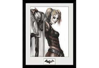 Batman Arkham City Collector Print Harley Quinn