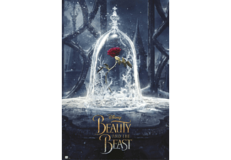 Beauty and the Beast Poster Rose