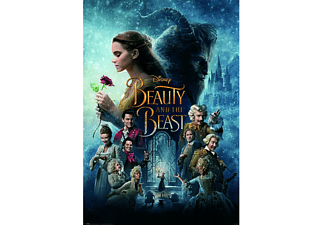 Beauty and the Beast Film Poster US Onesheet Size