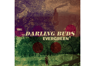 The Darling Buds - Evergreen EP - (EP (analog))