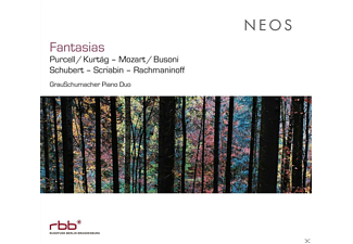 GrauSchumacher Piano Duo - FANTASIEN - (CD)