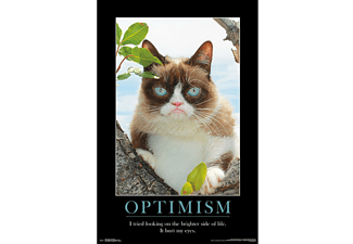 Grumpy Cat Poster Brighter Side