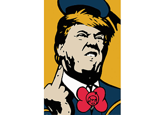 TV BOY Poster Donald Trump
