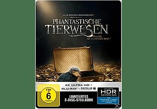 Phantastische Tierwesen und wo sie zu finden sind (Exklusive SteelBook™ Edition) - (4K Ultra HD Blu-ray + Blu-ray)