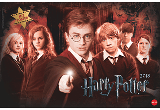 Harry Potter Broschur XL 2018